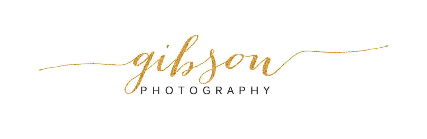 gibson PHOTOGRAPHY