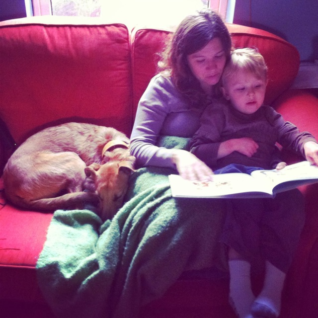 puppyreading