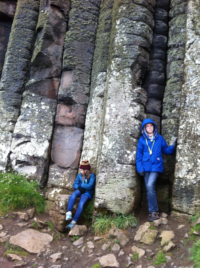 // the organ pipes at giant's causeway
