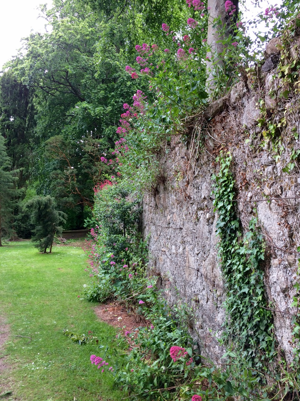 powerscourt_wall
