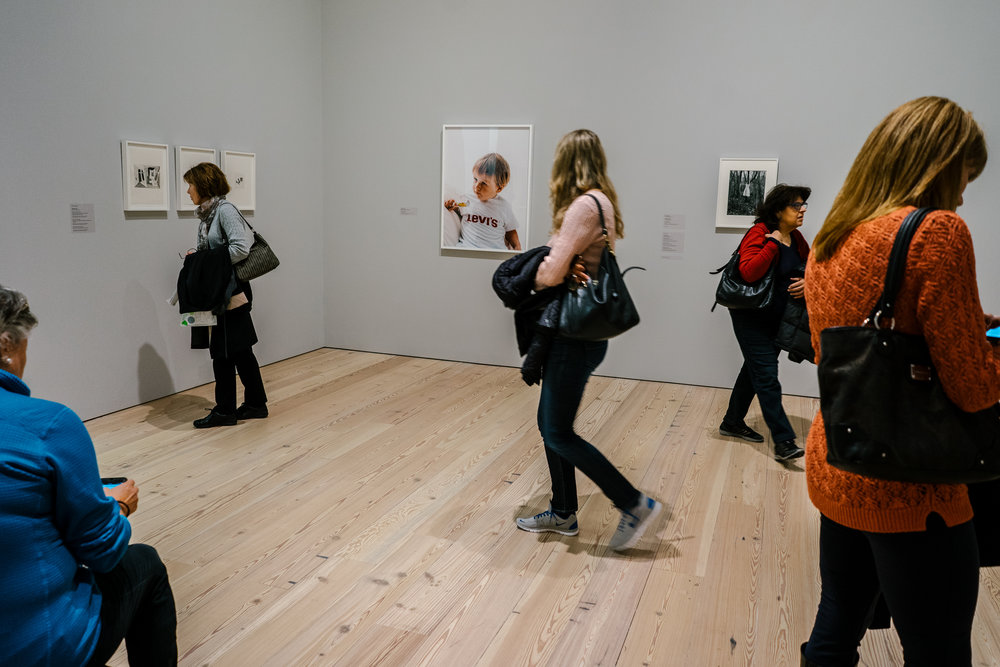 """Various works from the exhibtion """"Collected by Thea Westreich Wagner and Ethan Wagner,"""" at the Whitney Museum for American Art."""