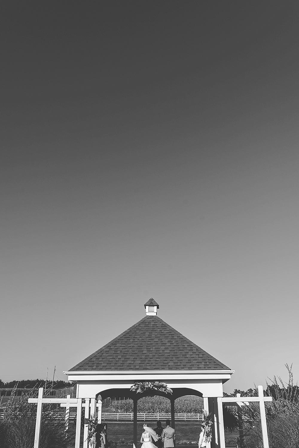 2014-10-09_0035.jpg