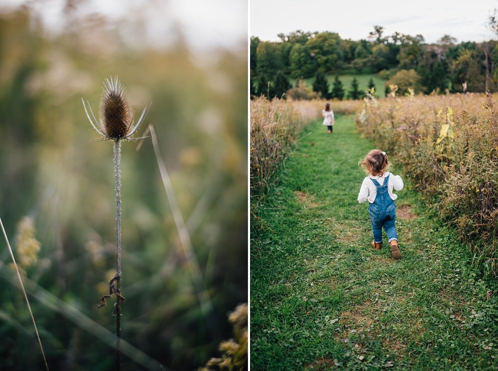 Fern Hollow Nature Reserve Sewickley Family Photography Pittsburgh Rachel Rossetti_0255.jpg