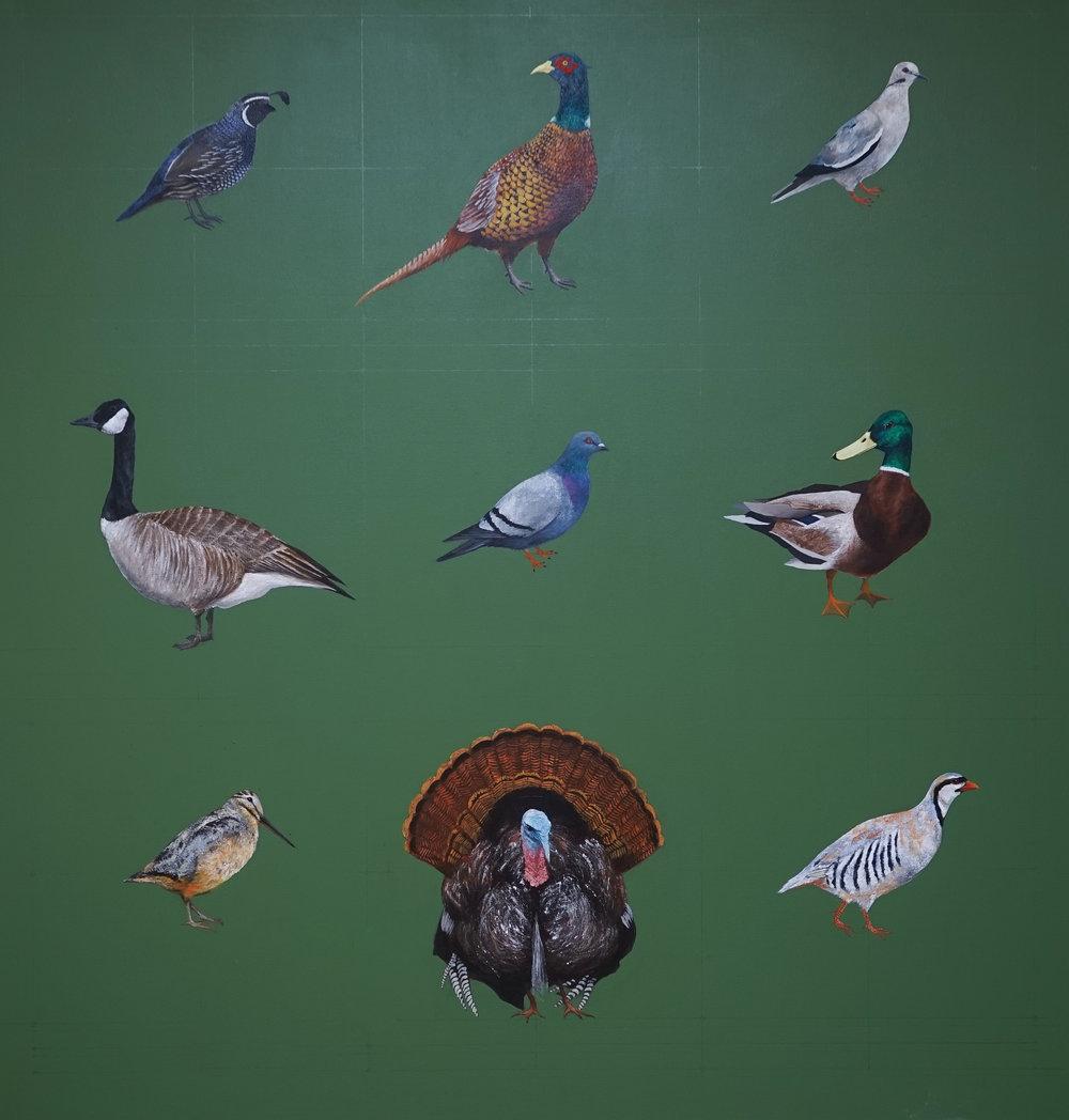 Birds (1 of 1).jpg