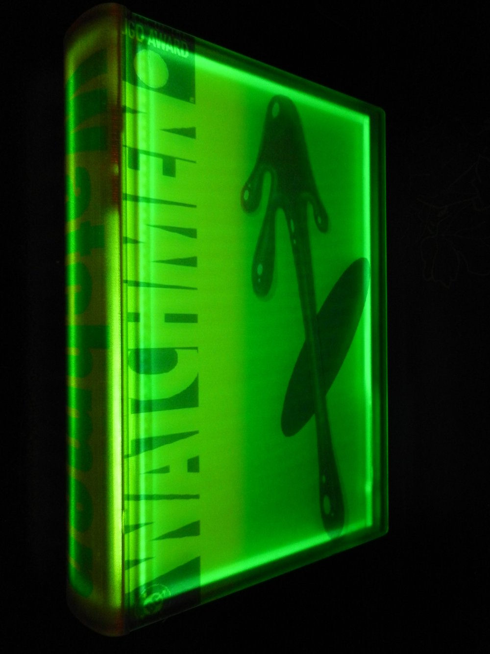Airan Kang (Seoul)   Watchmen  2009  LED Lights, Resin Encasement and Custom Electronics