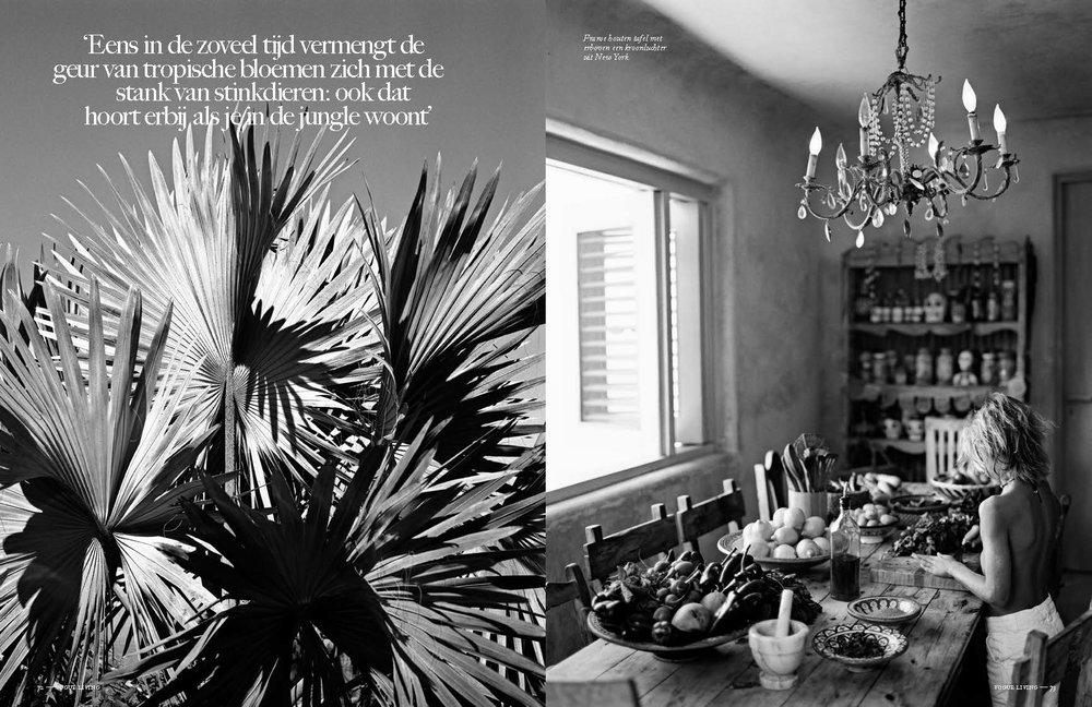 008_Anne Menke Mexico Vogue_Living_VL3_LR_Page_07.jpg