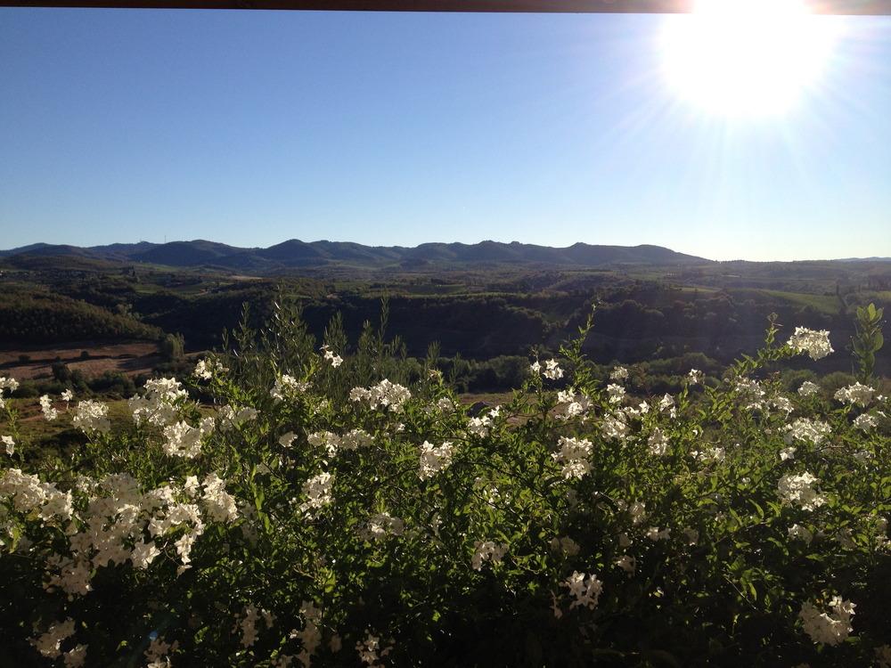 beautiful hills of Tuscany
