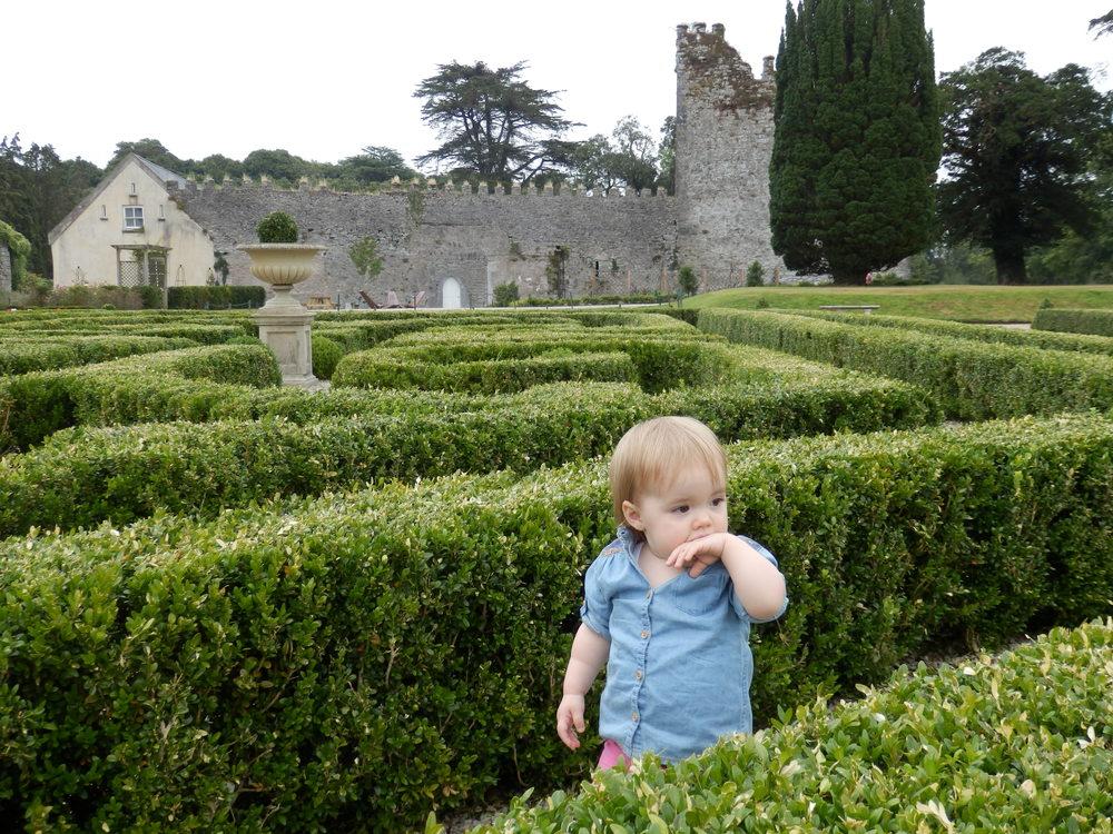 Castlemartyr_hedge_maze_bug