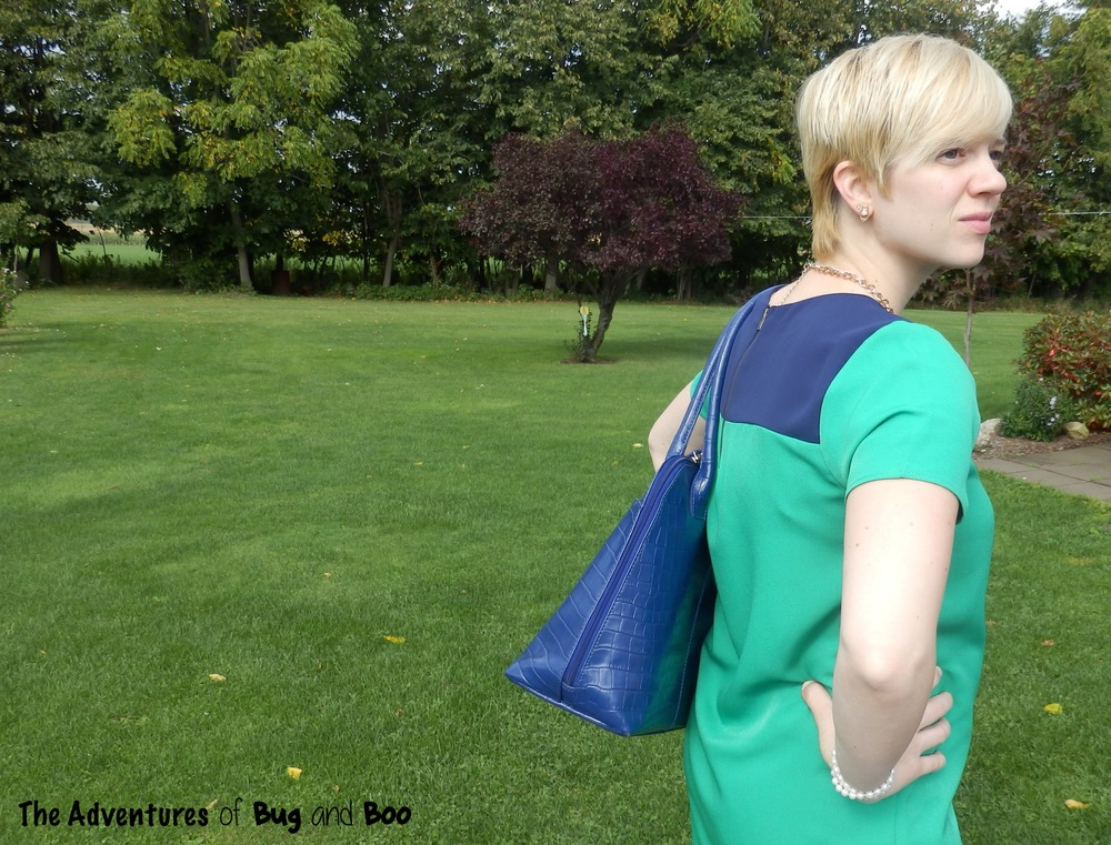 Color Blocked Dress, Osprey London tote || Adventures of Bug and Boo
