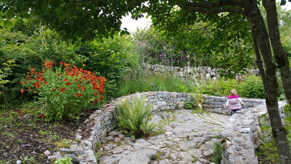 Wandering the gardens at the Burren Perfumery
