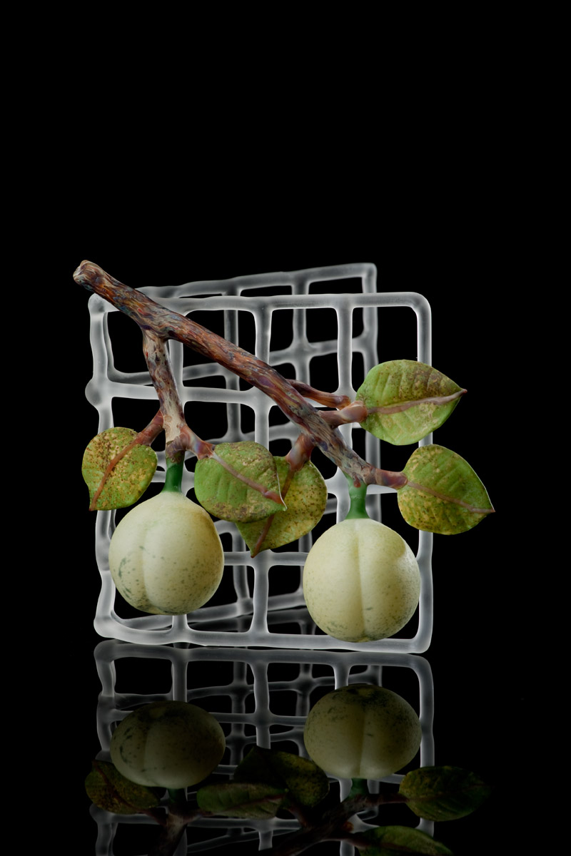 Mini Trellis with Green Plums 2.jpg