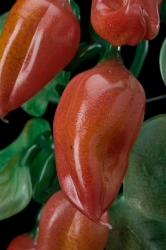 Peppers detail 2.jpg