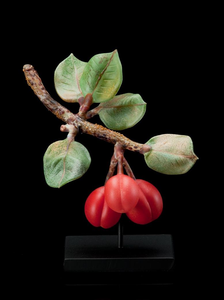 Red Plums.jpg