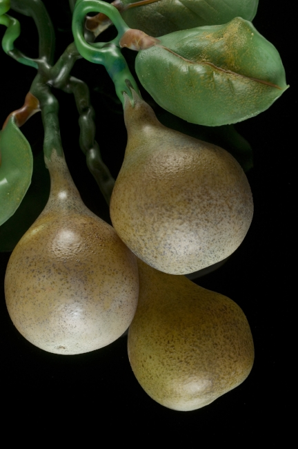 Gourds detail.jpg