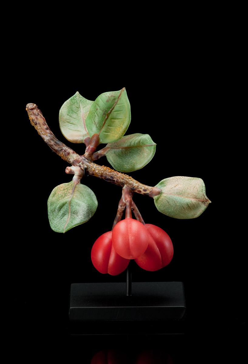 Red Plums (2).jpg