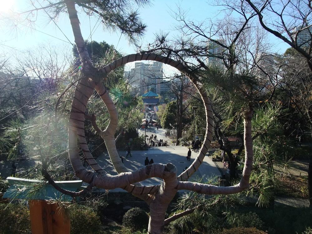 The park in Ueno