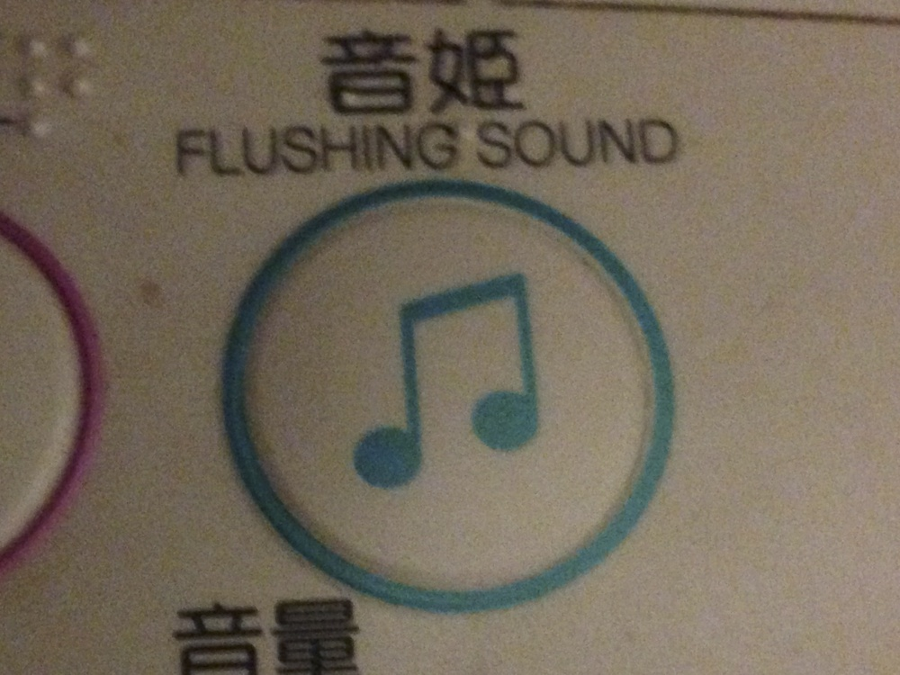 Flushing sound button
