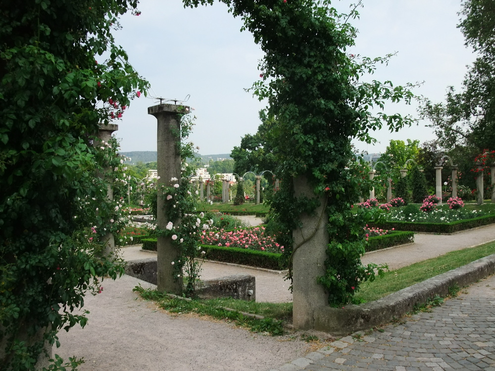 The rose garden at Rosenstein Palace