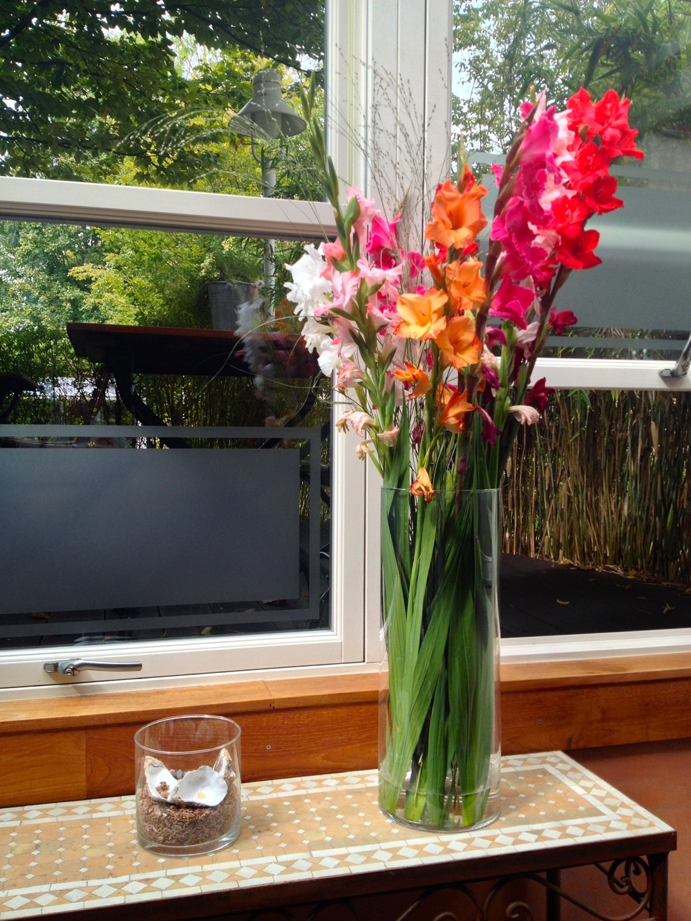Lovely flowers on the back patio where we were seated