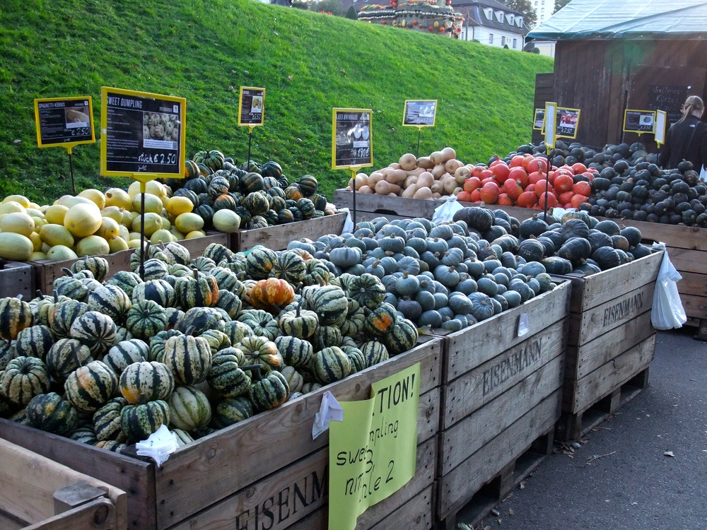 Gourds and pumpkins on sale