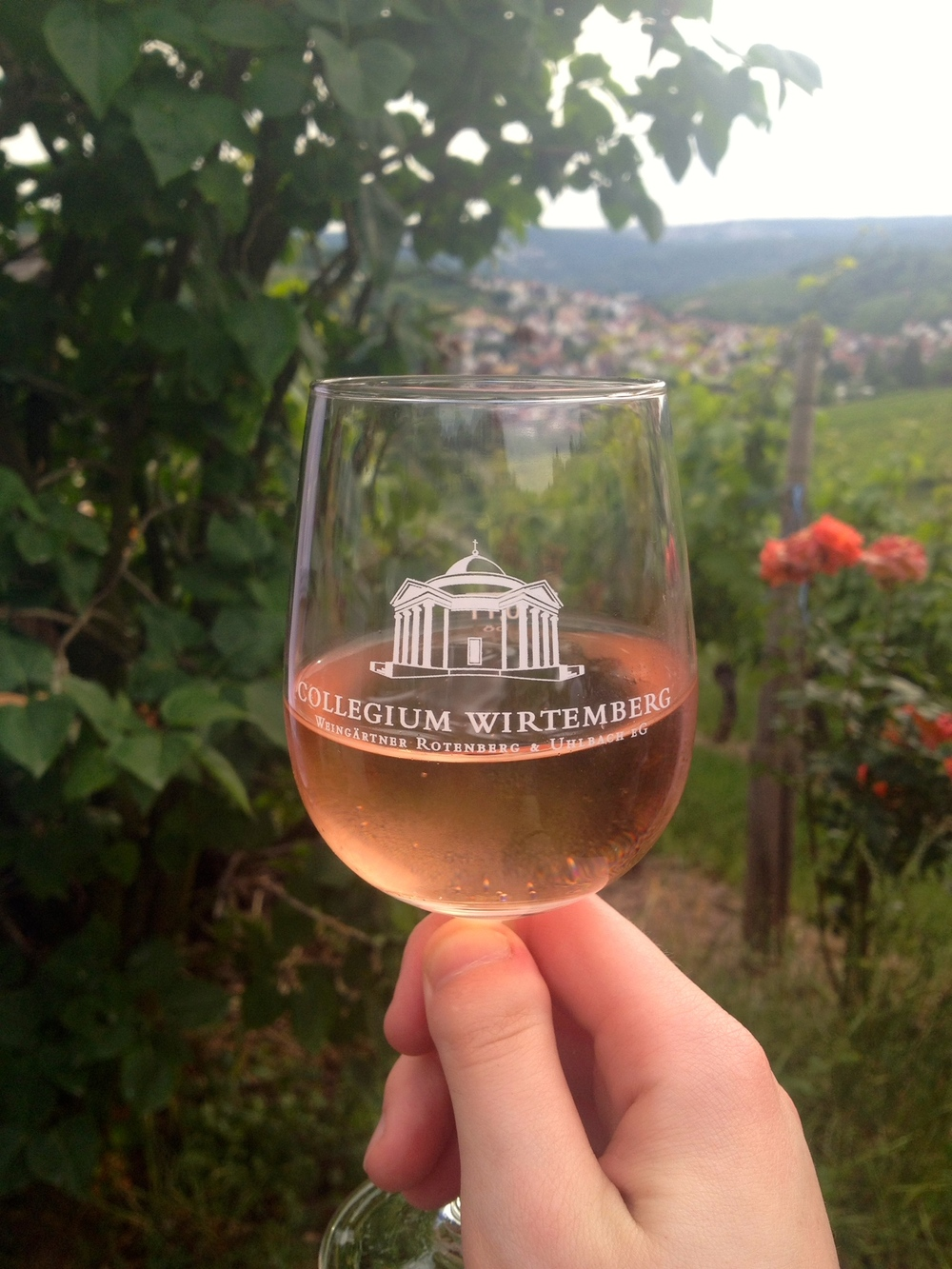 Wine tasting on the Collegium Wirtemberg wine walk last year