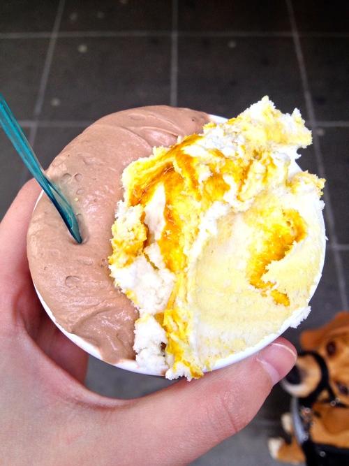 Nutella  and  Crème Caramel   gelato