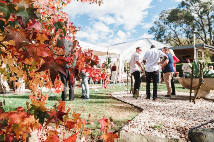 sydney-outdoor-autumn-backyard-engagement-party