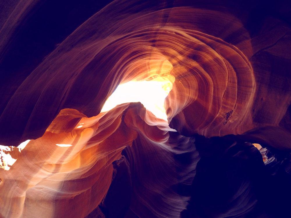Antelope-Gold-web.jpg