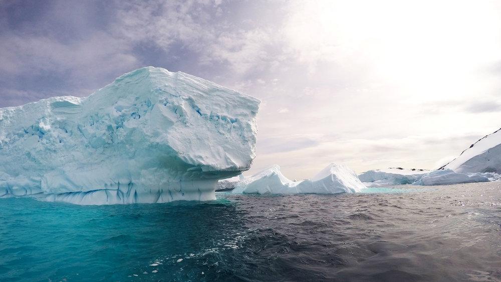 Glacier-Petermann-Island-web.jpg