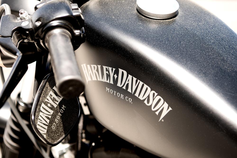 Harley Davidson 883 Roadster.