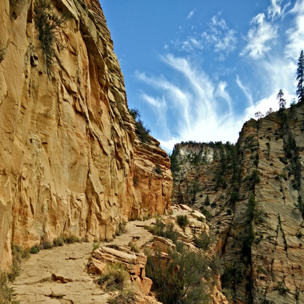 On the way to Observation Point at Zion. A hike for all switchback lovers.