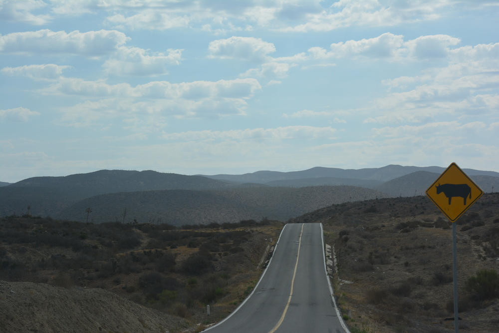 Mexico Route 1, south of Bahia de San Quintín