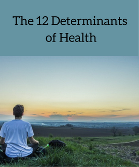 The 12 Determinantsof Health (1).png