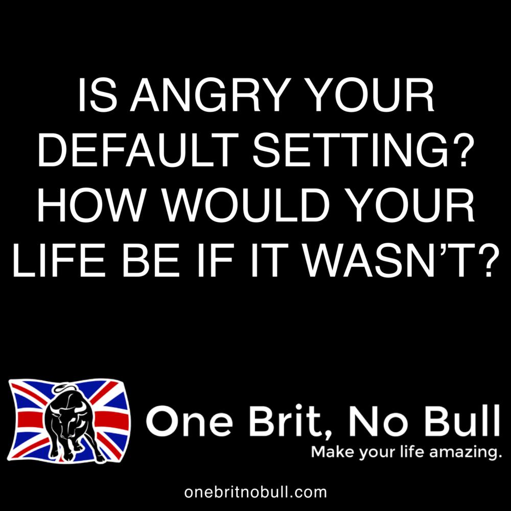 onebritnobull.com