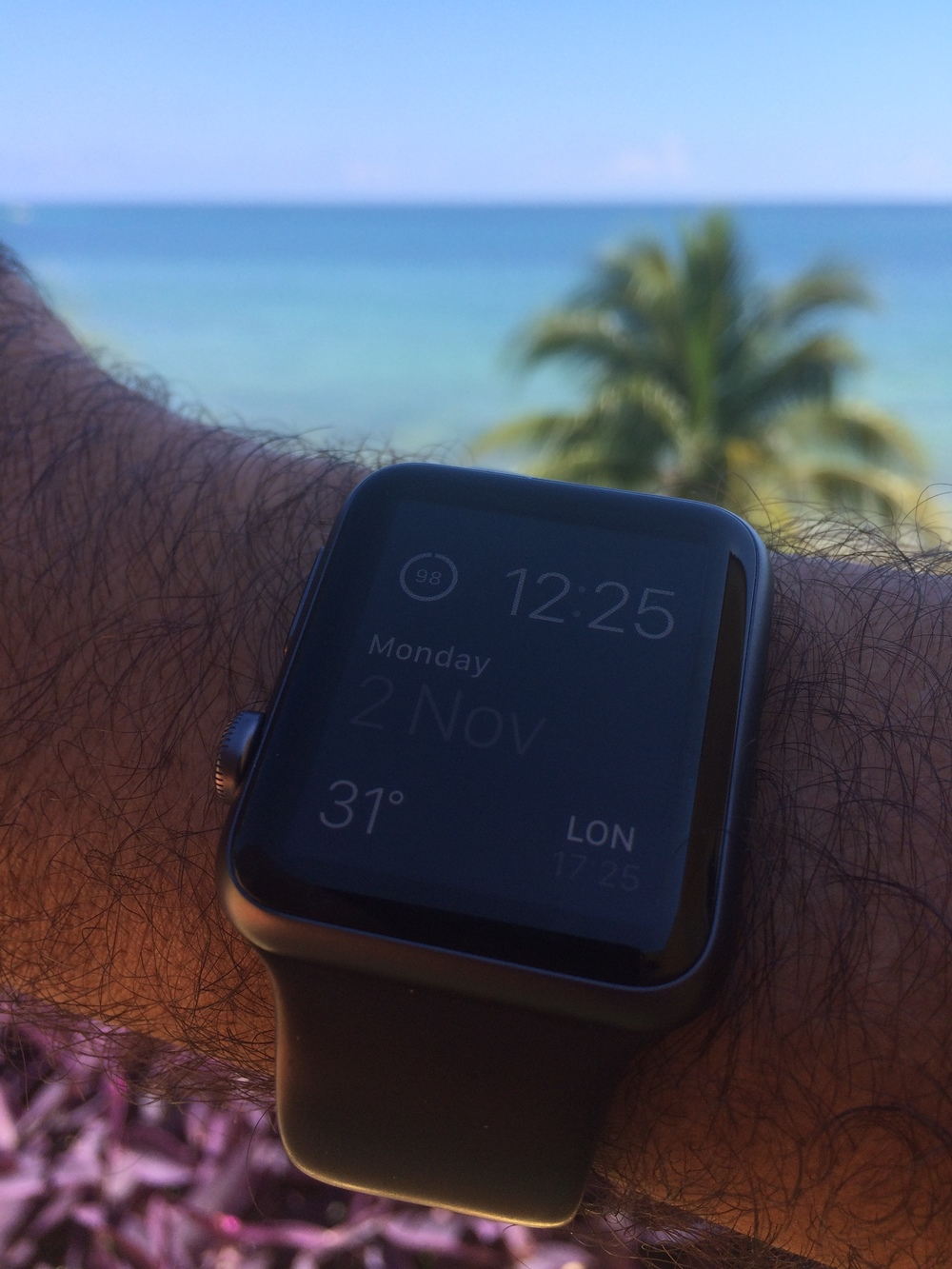 Apple Watch in Paradise.JPG