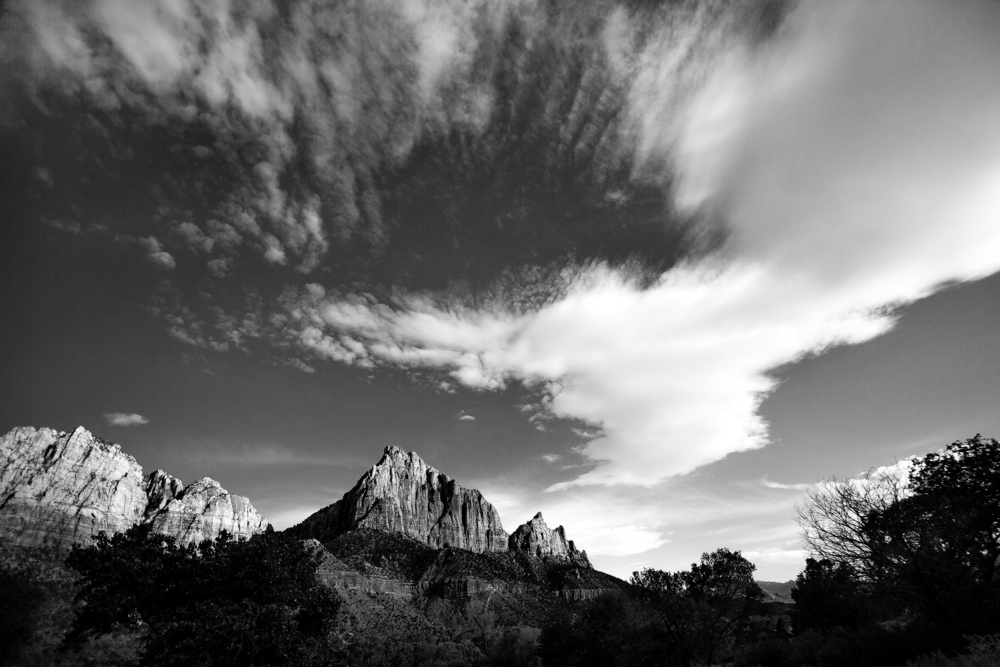 2014-06-17_Zion_National_Park_Sam.Ortega9173.jpg