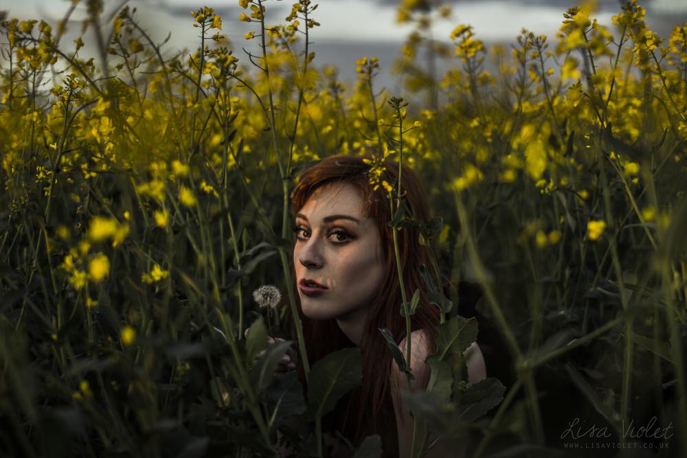 Image taken by Lisa Violet