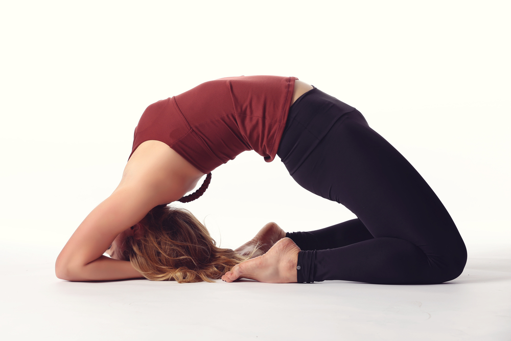 camel-pose-variation.jpg