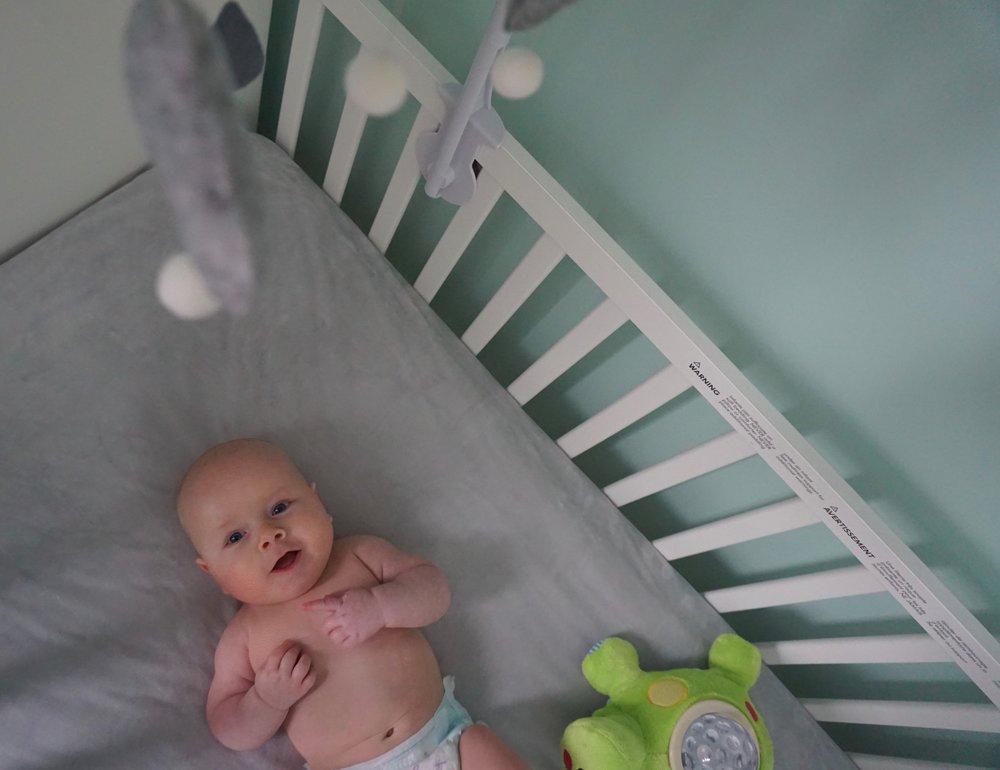Memphis in crib
