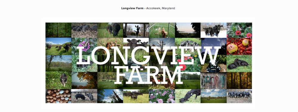 Longview Farm (U.S.A.)