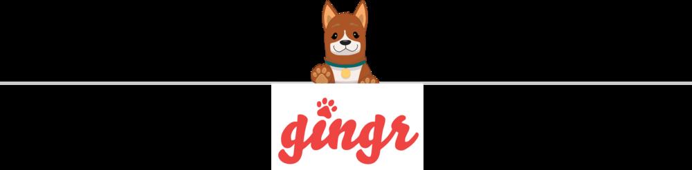 Ginger Website Paws Up & Logo.png
