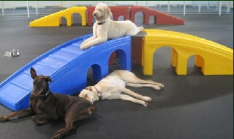 Modular set distributed by puppyplayground.com