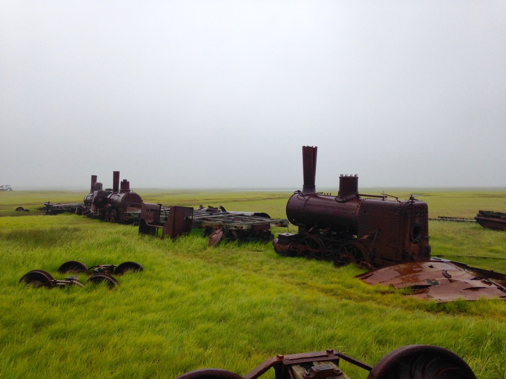 What's That emerging from the fog in the middle of nowhere? oh just a 100 year old abandoned train.