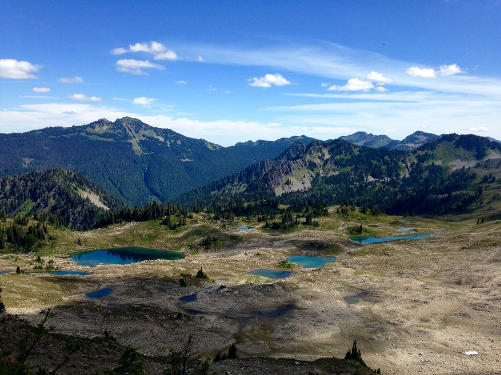 view from Bogachiel Peak in Olympic National park looking down at Lunch Lake.
