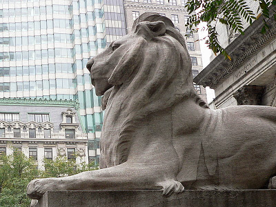 800px-New_York_Public_Library_Lion-27527.jpg
