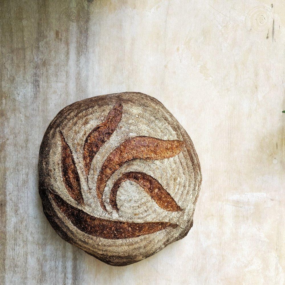 Charcoal wheat