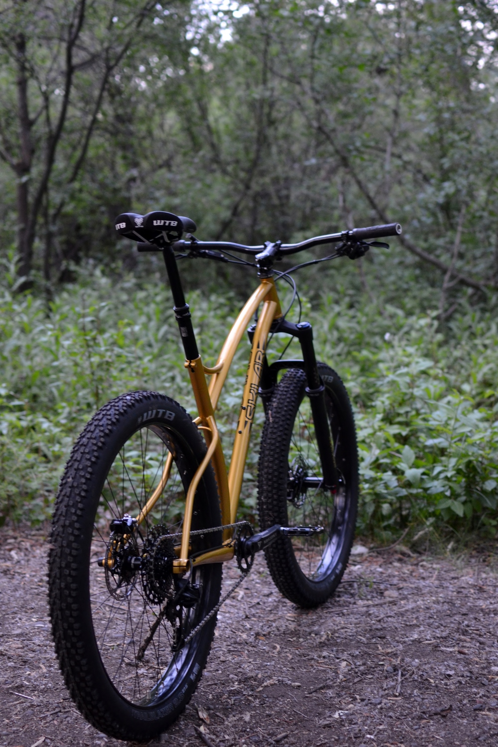Sklar Custom plus mountain bike steel