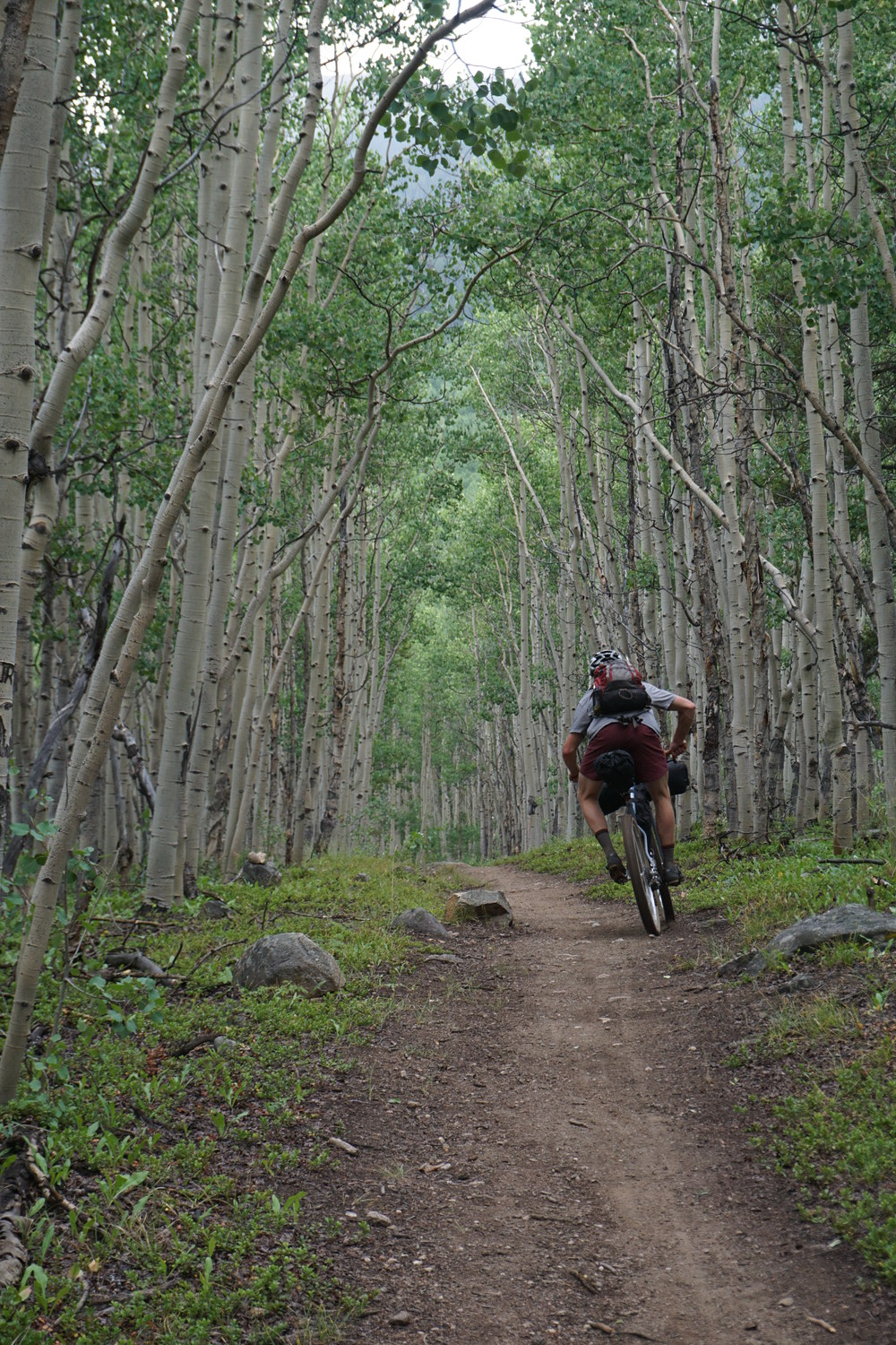 Sklar Colorado Trail (117).JPG