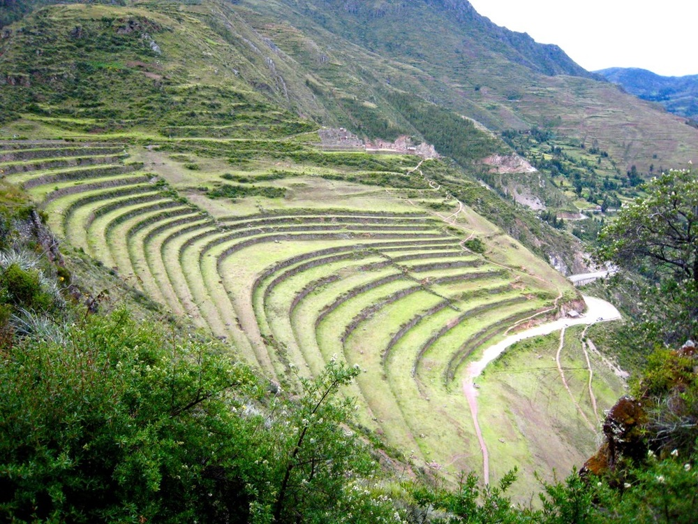 Terraced farming in a mountainous country.