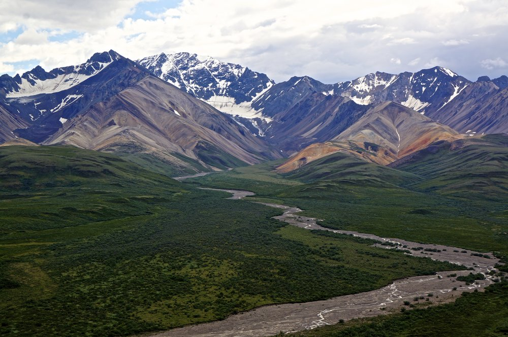River of silt-Denali National Park